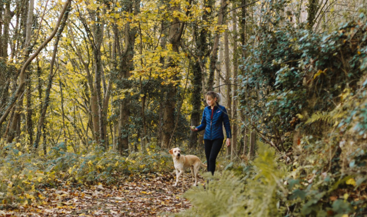 woman and dog walking in the woods